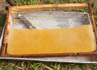 пчелиная рамка