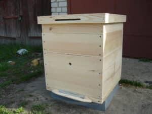 Для начинающего пчеловода