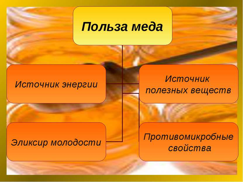 основные полезные свойства меда
