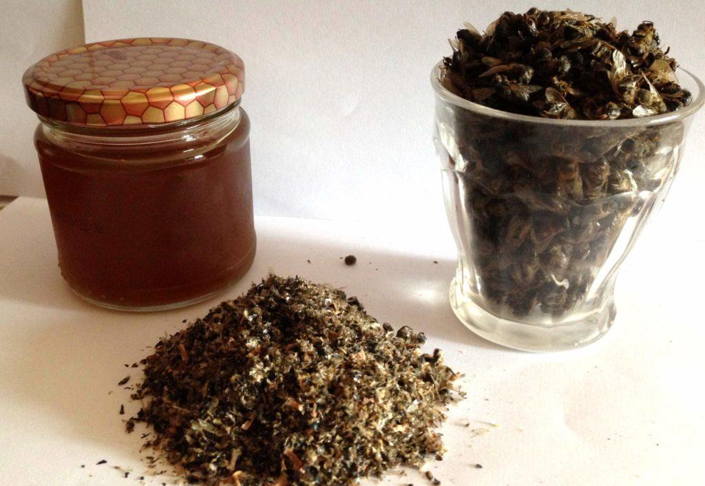 Пчелиный подмор – лечебные свойства, применение и противопоказания для женщин и мужчин, рецепты препаратов