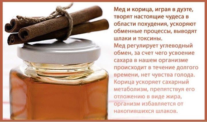 полезные свойства корицы с медом