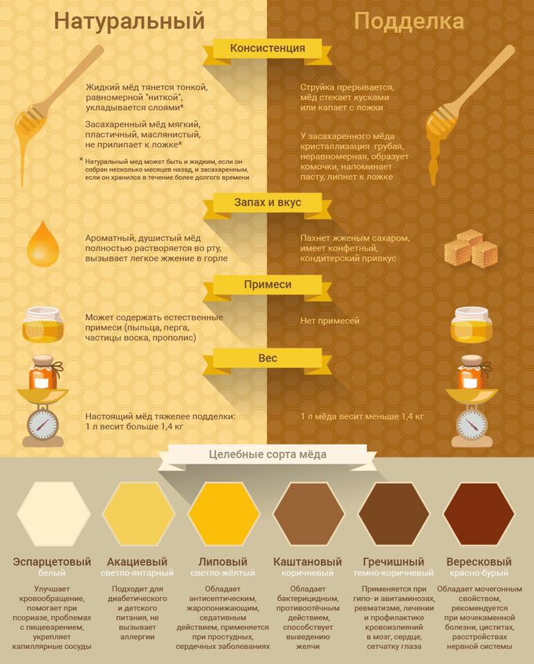 сравнение поддельного и натурального меда