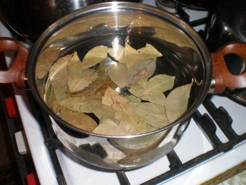 готовим настойку из лаврового листа