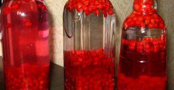 настойка красной смородины 2